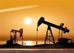 山东赛维石油科技有限公司-司璞华